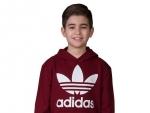 adidas-cd6501-j_trefoil_hoodie-3